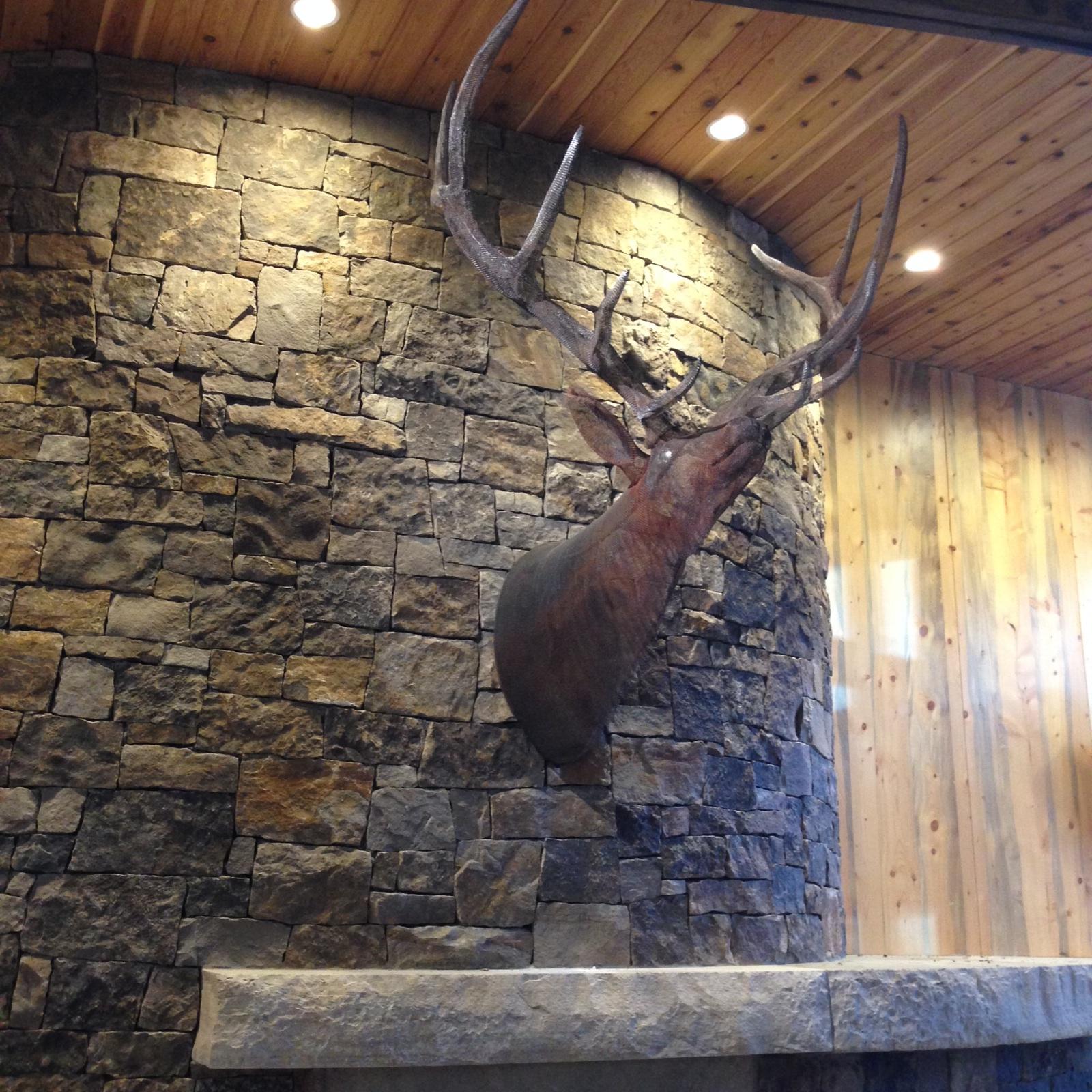 Elk mount fireplace - photo#7