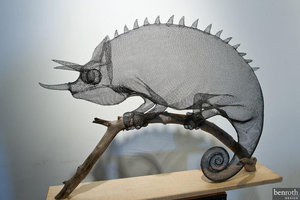 Chameleon by Ben Roth